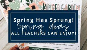 spring-classroom-ideas